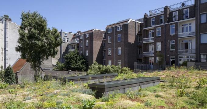 Honderden hotels in Amsterdam onder de loep voor groendak